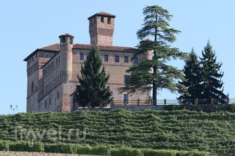 Замок как крепость. И винный погреб / Италия