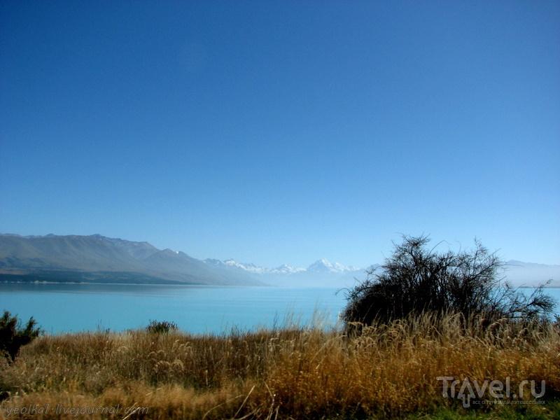 В стране антиподов. Озеро Текапо: голубое-голубое, не бывает голубей... / Фото из Новой Зеландии