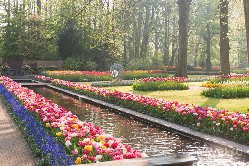 Keukenhof / Нидерланды