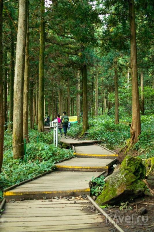 Вулкан Halla-san самая высокая точка Южной Кореи / Южная Корея