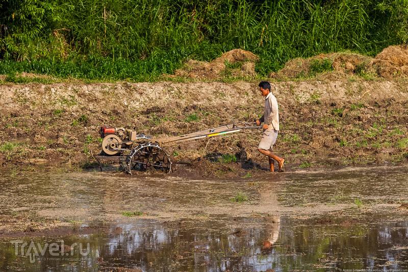Бирма. Озеро Инле / Фото из Мьянмы