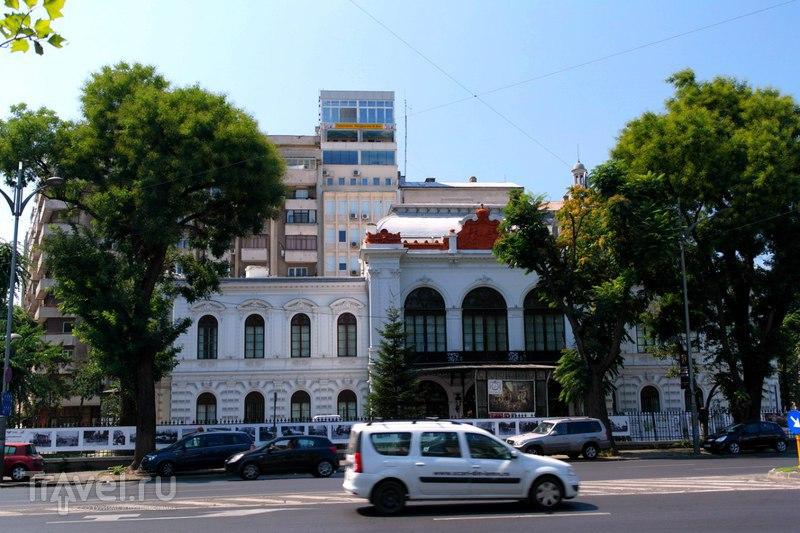 Бухарест. Прогулка по городу и дорога в Тинеретулуи / Румыния