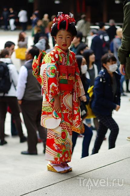 Гуляем по туристическим местам Токио / Фото из Японии