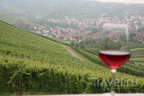 """""""Виноградник"""" в Штутгарте. Все вина свои / Германия"""