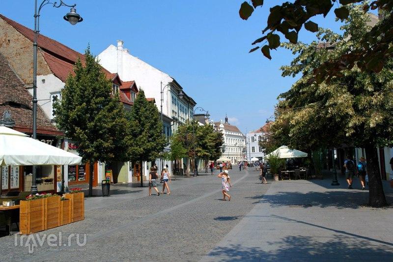Сибиу. Знакомство с городом / Румыния