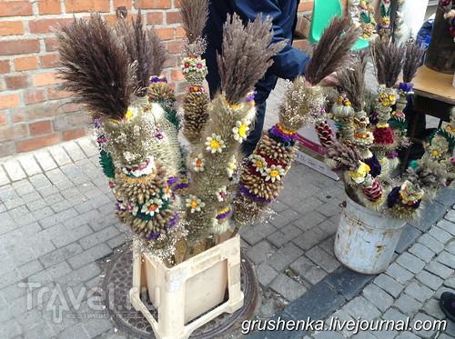 Казюкас-2016 / Литва