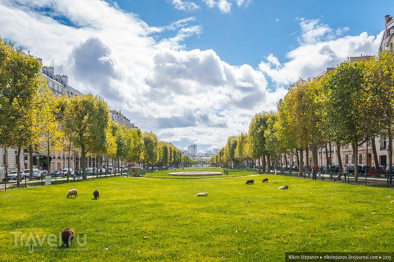 Один день в Париже / Фото из Франции