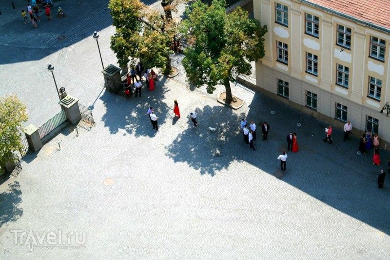 Сибиу с высоты птичьего полета / Румыния