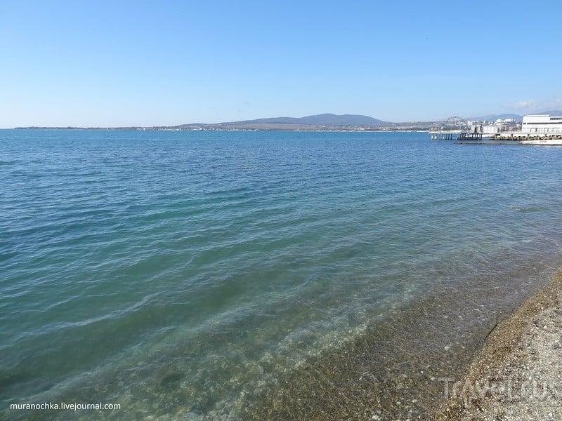 Вдоль Чёрного моря в начале весны... / Фото из России