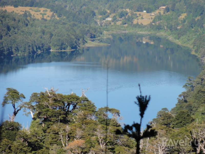 Национальный парк Уэркеуэ - субтропики в Патагонии / Чили