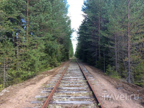 По Финляндии на дрезине / Финляндия