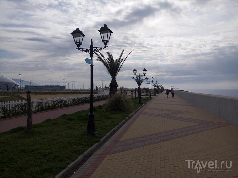 Прогулка по Адлеру / Фото из России