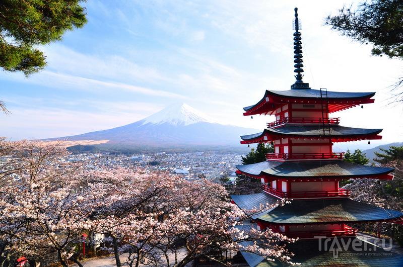Пагода, сакура и Фудзи / Япония