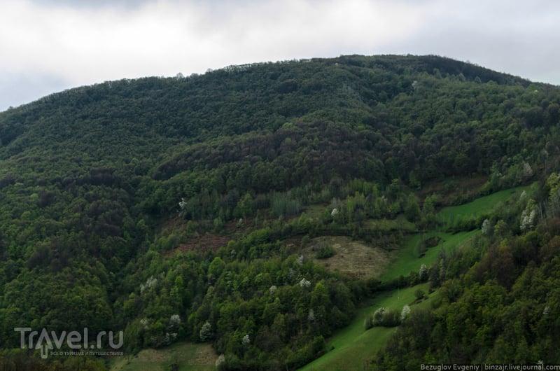 Балканы. Мокра Гора / Фото из Сербии