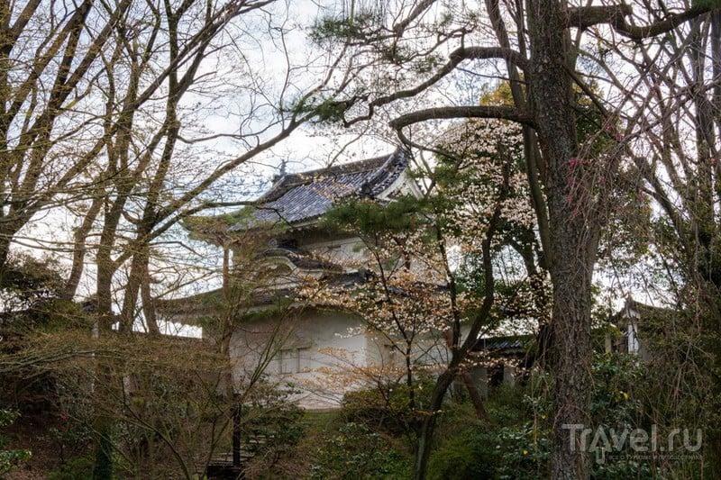 Киото. Замок сёгунов Нидзё / Фото из Японии