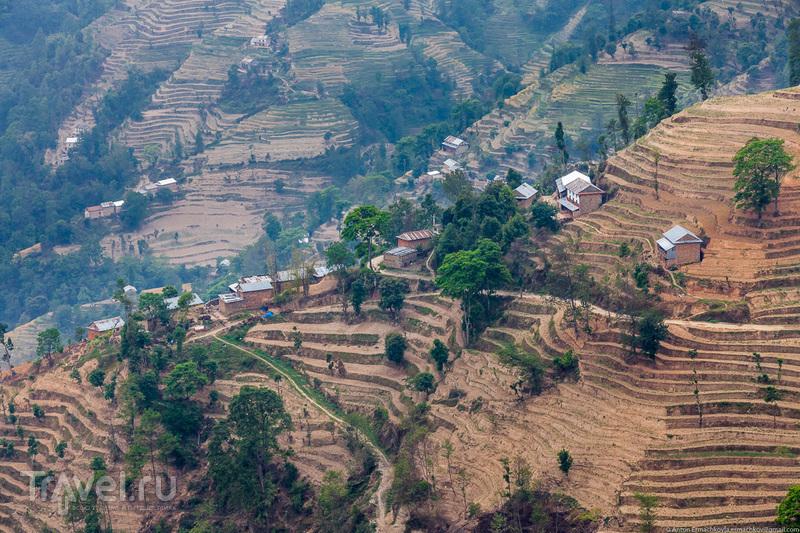 Неизвестные Гималаи. В поисках охотников за медом диких пчёл. Нагаркот / Фото из Китая
