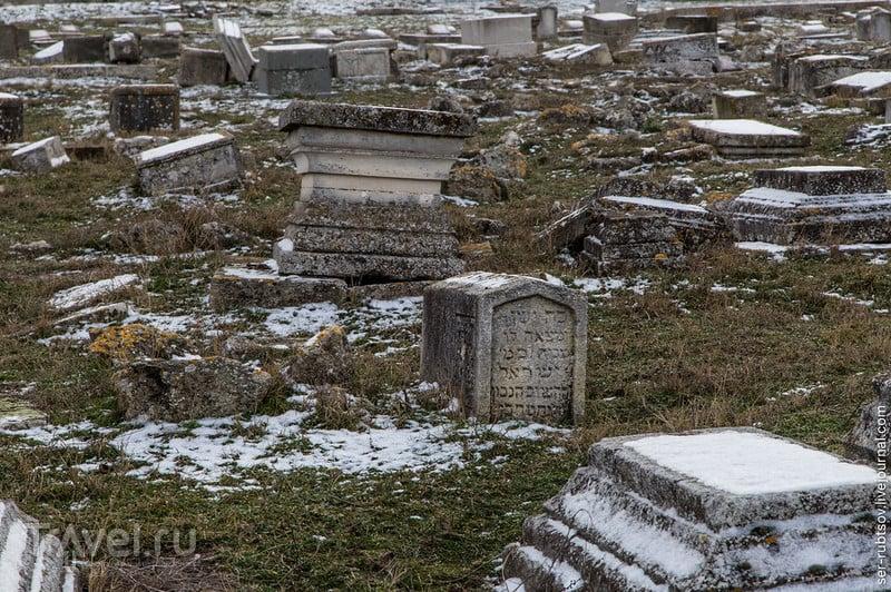Старое караимское кладбище в Севастополе / Фото из России