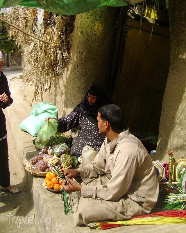 Оазис Аль-Файюм... малоизвестный  нетуристический Египет / Египет