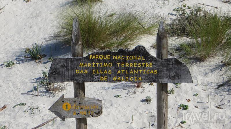 Острова Сиес: не только лучший пляж в мире / Фото из Испании