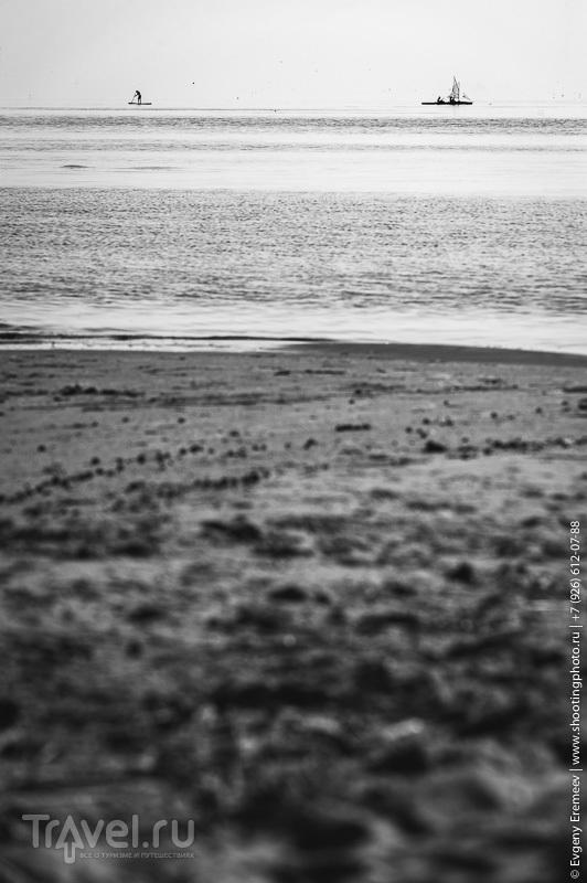 Красоты Куршской косы / Фото из России