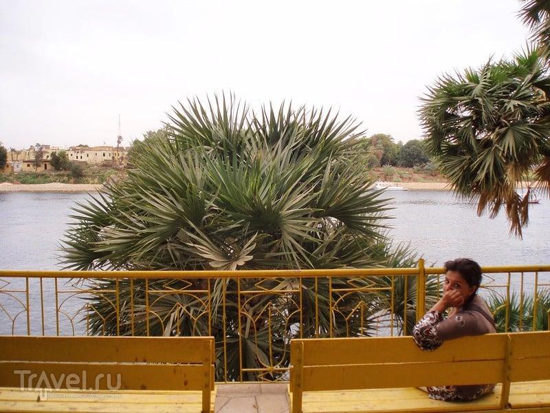 Река Нил, Ливийская пустыня и Ботанический сад в Асуане / Египет