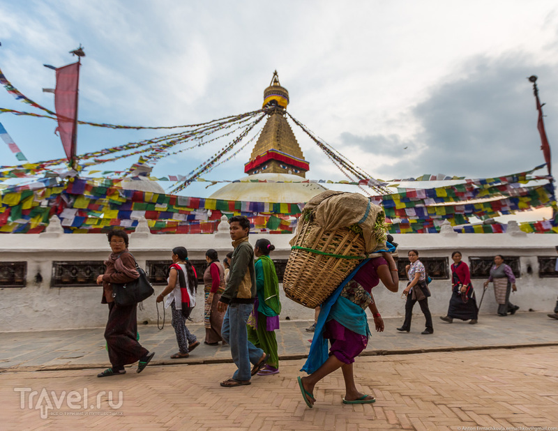В поисках охотников за медом диких пчёл. Катманду. Боднатх / Фото из Непала