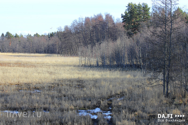 Национальный парк Селькямери / Фото из Финляндии