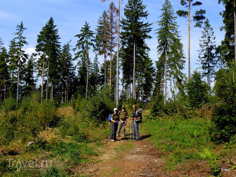 Словацкий Рай - просто рай! Томашовски выгляд и Класторска роклина / Фото из Словакии
