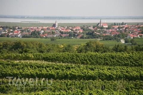 Маленький, но славный Руст. Город вина и аистов / Австрия