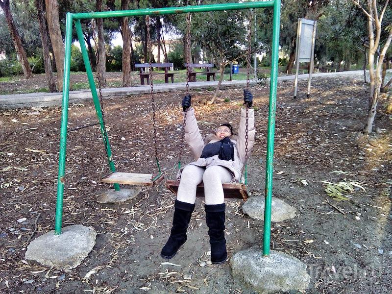 Роща Дассуди: ещё один природный и исторический памятник Лимассола / Фото с Кипра