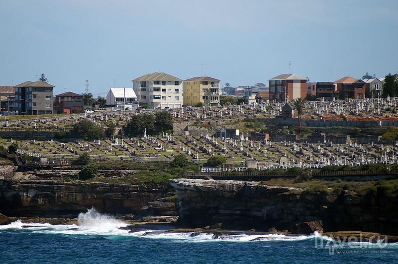 Австралия городская: Сидней и Мельбурн / Фото из Австралии