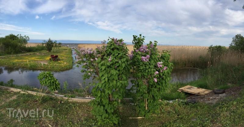 Окрестности Чудского озера / Эстония