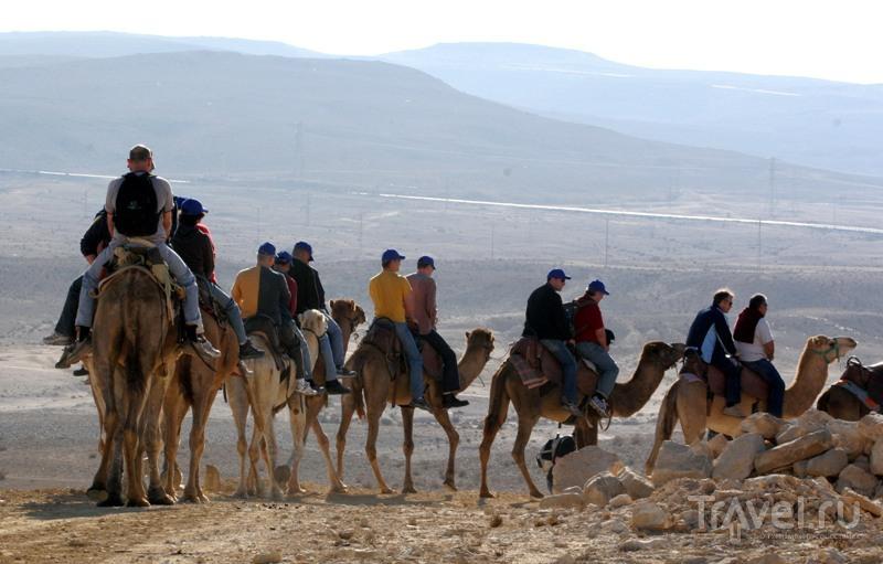 Эйн-Авдат и кемпинг Хан-ха-Шаярот / Израиль
