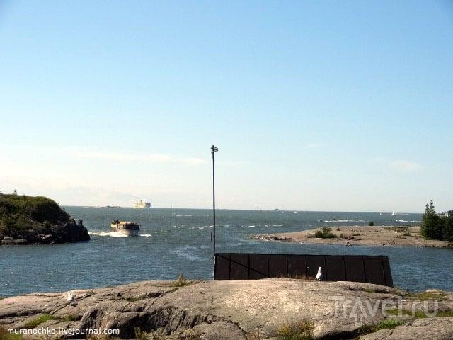 Стирка ковров и прыжки с тарзанки в центре Хельсинки / Финляндия