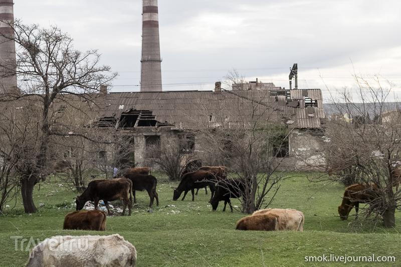 Грузия, монастырь Давид Гареджи и бескрайние просторы / Фото из Грузии