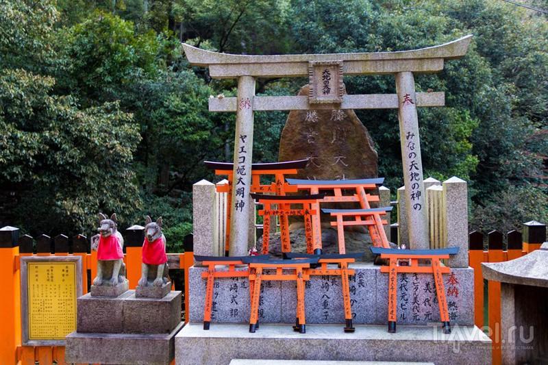 Киото. Лисий храм Фусими Инари / Фото из Японии