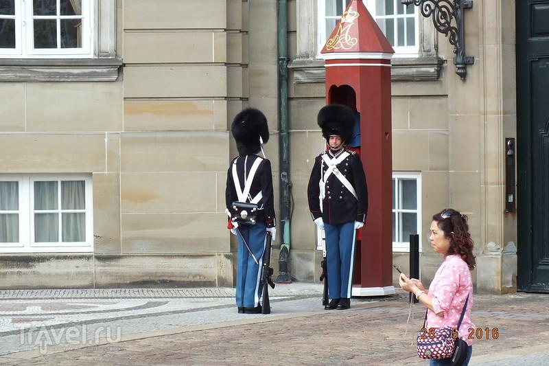 Полдня в Копенгагене / Дания