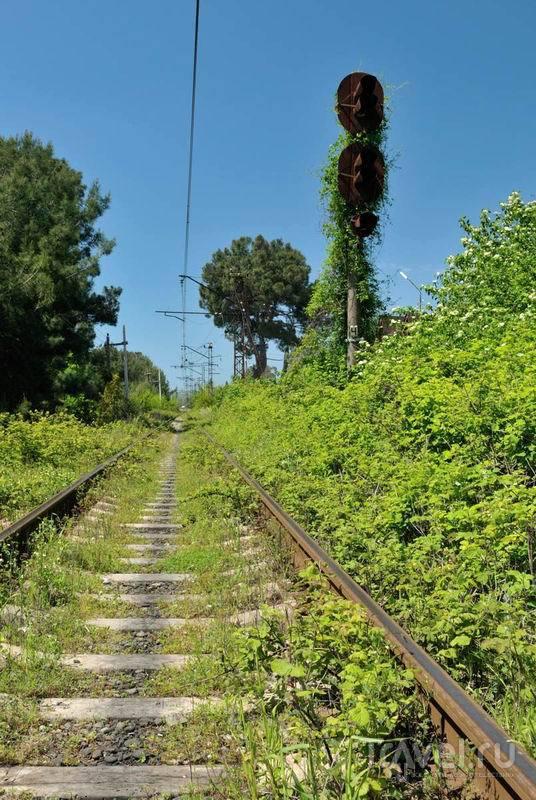 Главная железнодорожная ветка страны. Природа постепенно забирает свое / Россия