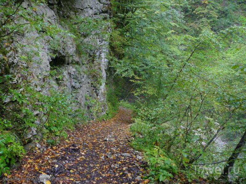 Словения - Хорватия без городов. Когда идет дождь... / Фото из Словении