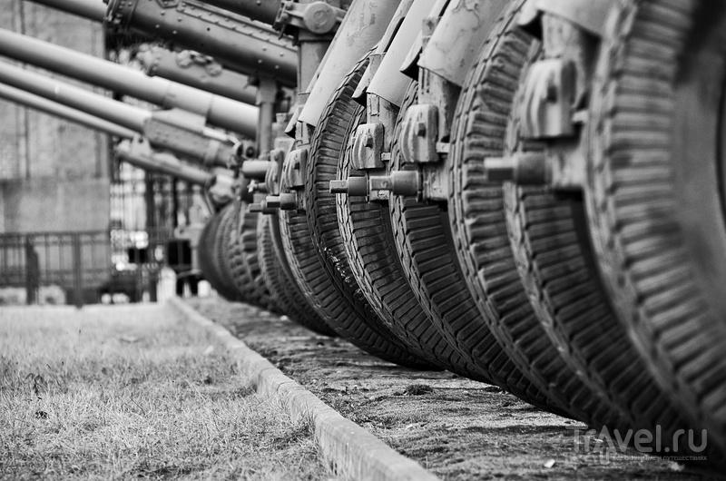 Мифы города на Неве / Фото из России