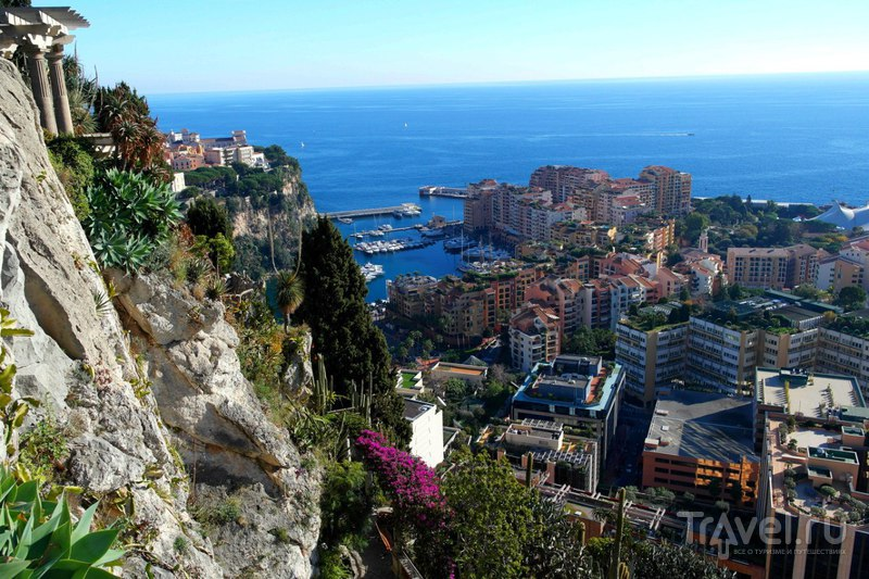 Монако - Виды на страну с горы и ботанический сад / Фото из Монако
