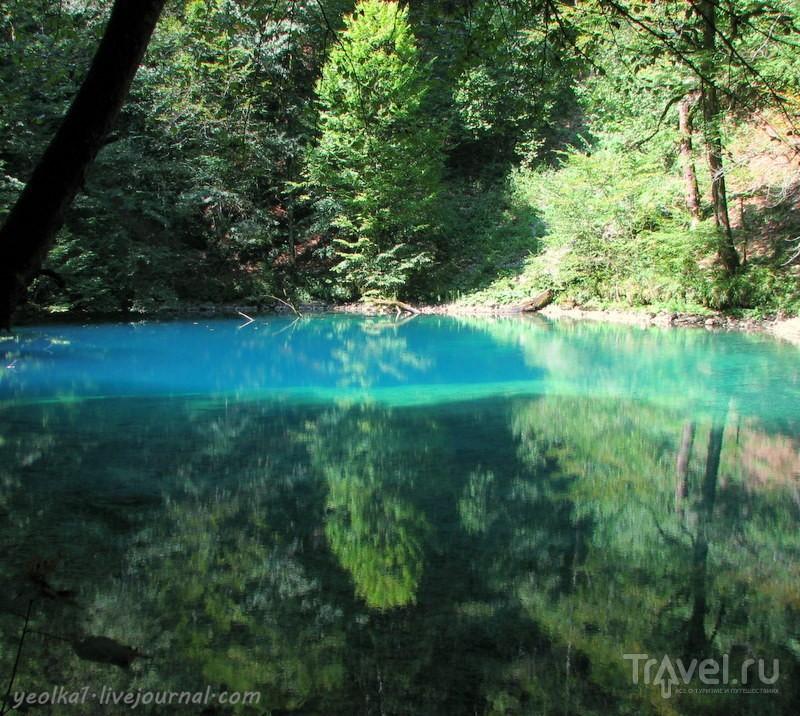 Словения - Хорватия без городов. Бездонный исток реки Купа / Фото из Хорватии