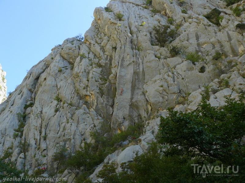 Словения - Хорватия без городов. Люди-пауки в заповеднике Пакленица / Фото из Хорватии