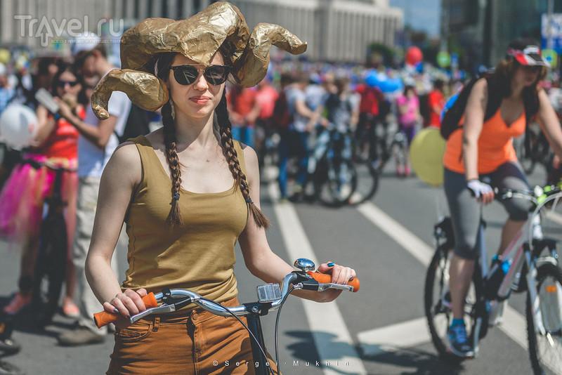 Что будет, если отдать Садовое кольцо велосипедам? / Россия