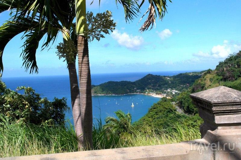Тобаго - водопад возле Мейсон Холл и пляж Кастара / Фото из Тринидада и Тобаго