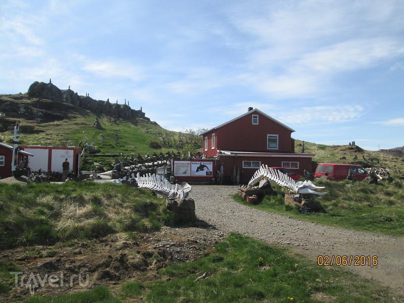 Исландия. Город Дьюпивогур (Djupivogur) / Фото из Исландии