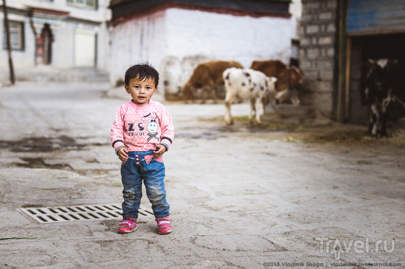Записки с крыши мира. Как красиво доехать до Шигадзе / Фото из Китая