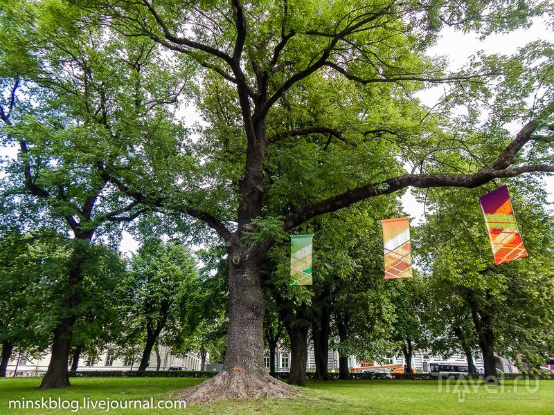 Один день в Старой Риге / Фото из Латвии