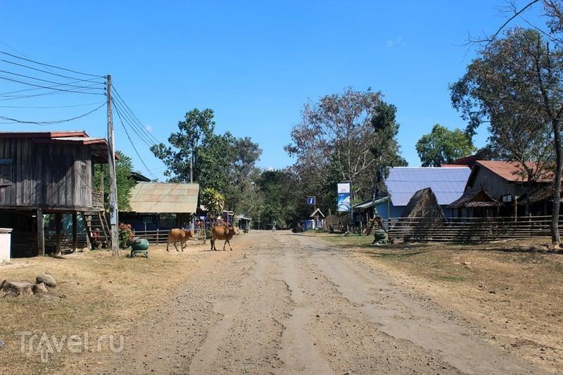 Лаос: плато Болавен / Лаос