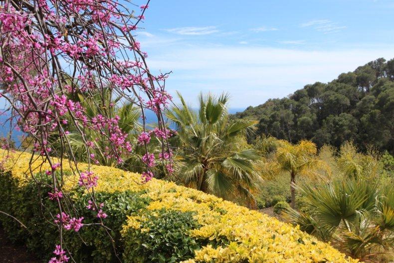 Коста-Брава: ботанический сад настоящего полковника / Испания